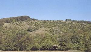 rezervace Rovna Hora